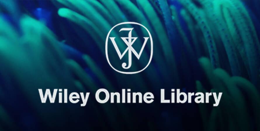 Модуль поиска переводных заимствований по Wiley