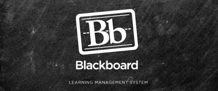 Blackboard антиплагиат проверить